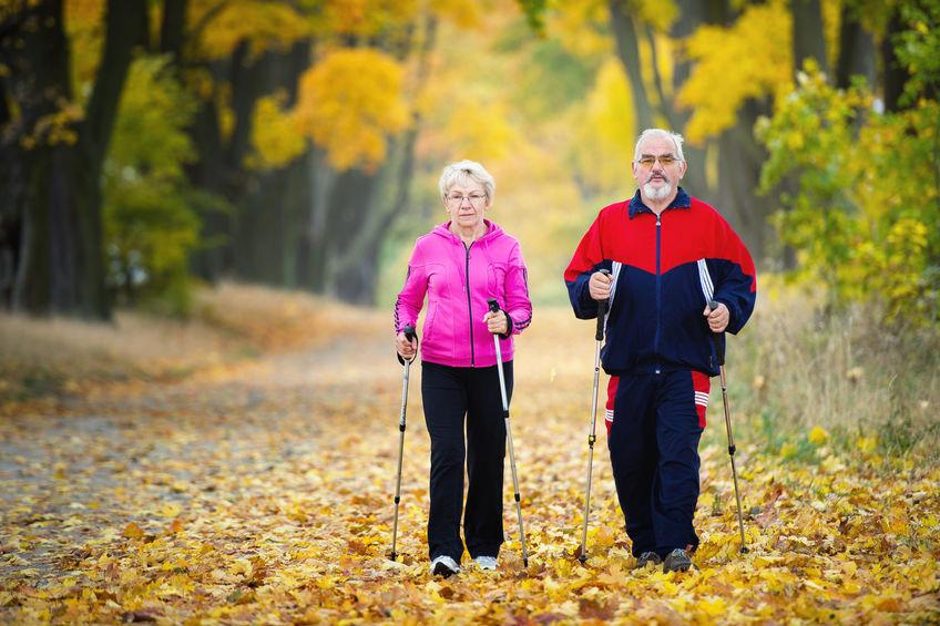 aktywność dla seniora
