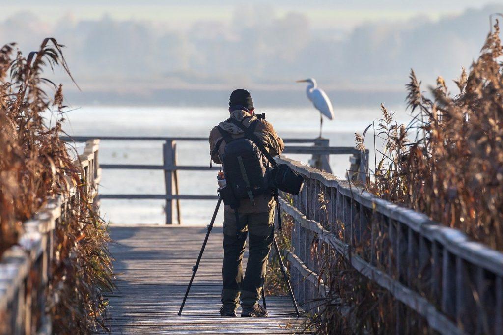 Zawodowy fotograf może pójść np na kurs fotografowania przyrody